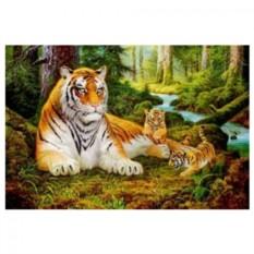 Картина-раскраска на холсте Лесные тигры