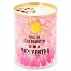 Набор для выращивания цветка Маргаритка