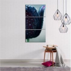Модульная картина Черный тюльпан