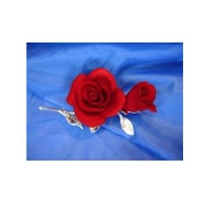 Роза с бутоном на стебле