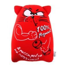 Антистрессовый кот Дрессировке не поддаюсь!