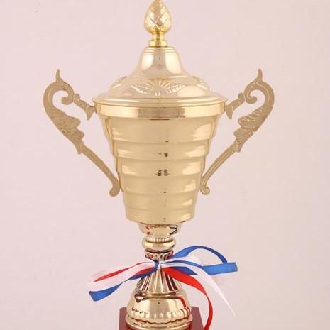Кубок Лучший водитель