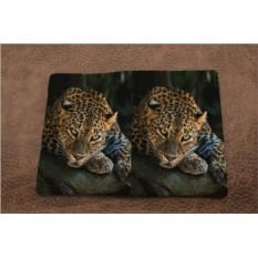 Обложка на паспорт «Загадочный леопард»