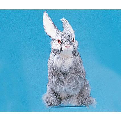 Модель «Заяц»
