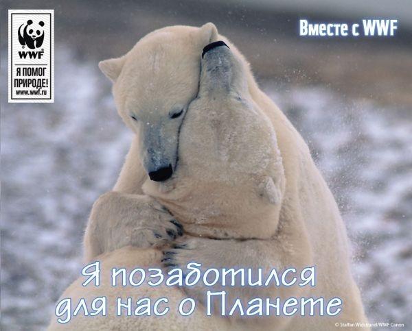 Электронная открытка WWF