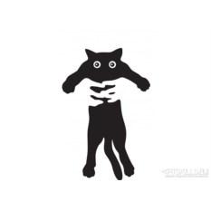 Женская футболка Black cat