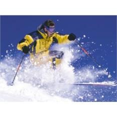 Сертификат Мастер-класс по горным лыжам для двоих