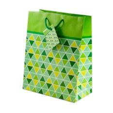 Зеленый бумажный подарочный пакет