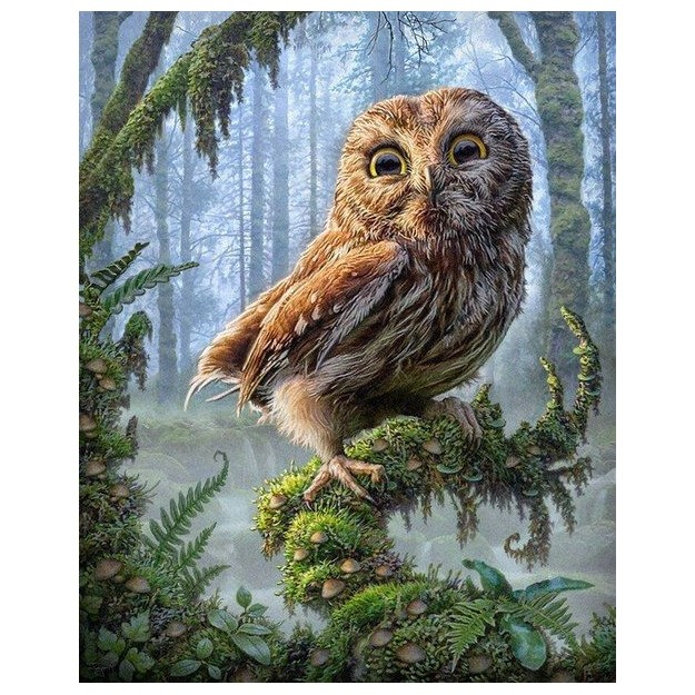 Картина-раскраска по номерам на холсте Лесная сова