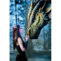 Пазл Educa 1000 деталей Девушка и дракон