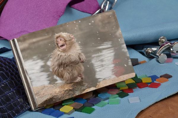 Зажим для денег Милая снежная обезьянка