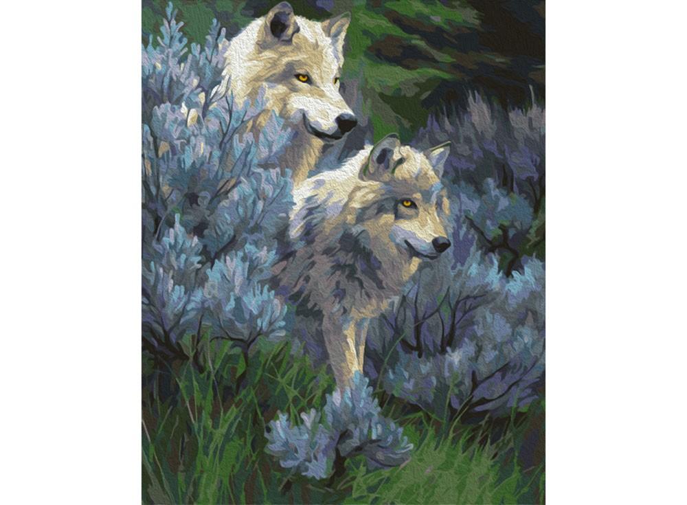 Картины по номерам «Волчья верность»