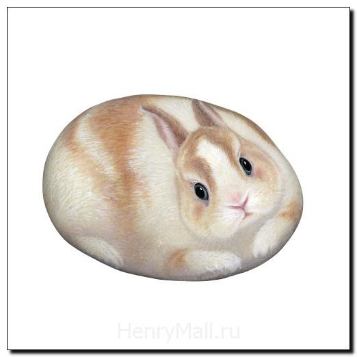 Камень Кролик Руби, Рак