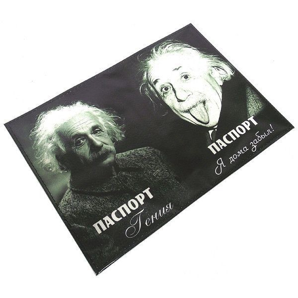 Кожаная обложка Энштейн