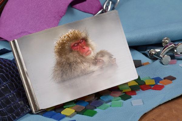 Зажим для денег Снежные обезьяны