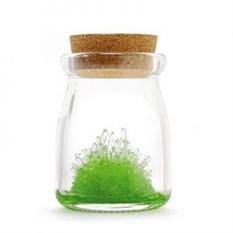 Кристалл в банке DIY (зеленый)