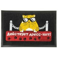 Придверный коврик Действует дресс-кот!