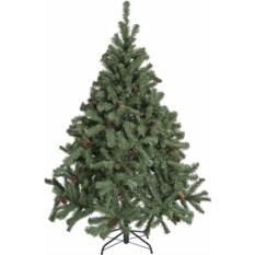 Елка Canadian Pine