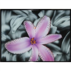 Картина Swarovski Контраст цвета - лилия