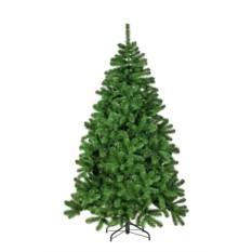 Сосна Рождественская от Триумф