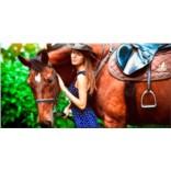 Сертификат Обучение езде на лошадях для начинающих