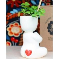 Набор для выращивания Eco Йог с сердечком