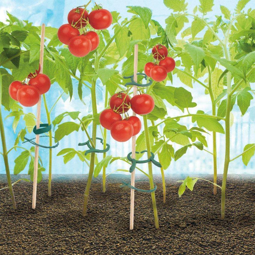 Набор для подвязки растений