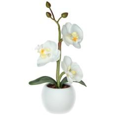 Светодиодный светильник-ночник «Южная орхидея»