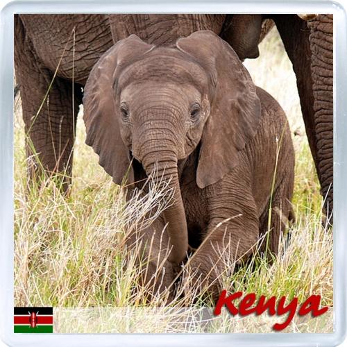 Магнит на холодильник: Кения. Африканский слон