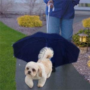 Зонт для собак (синий)