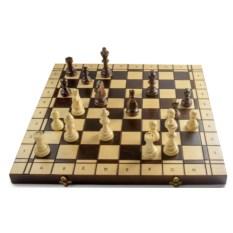 Шахматы и шашки «Фигурные»