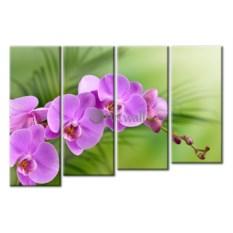Модульная картина «Ветка орхидеи» 70×48 см
