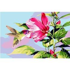 Набор для вышивки стразами «Колибри и гибискус»