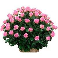 Корзина из живых цветов 51 розовая роза