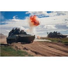 Миссия «Бронетехника: офицеры» (БМП, стрельба, 2 участника)