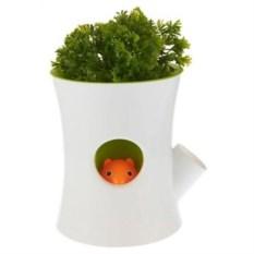 Бело-зеленый самополивающийся горшок Log&Squirrel