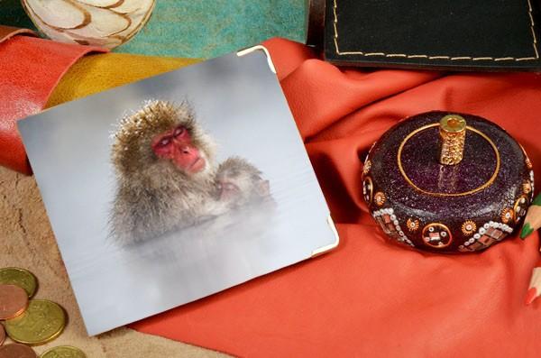 Кожаное белое портмоне Две обезьяны под снегом