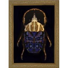 Картина с кристаллами Сваровски Большой скарабей