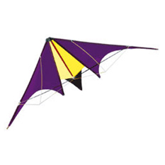 Спортивный воздушный змей «Скорпион»