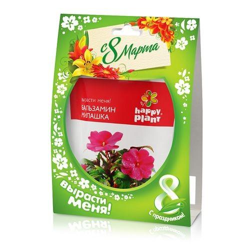 Happy plant Бальзамин - серия 8 марта