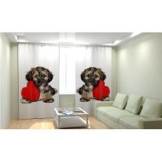 Фотошторы Собака с седрцем