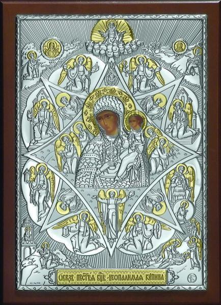 Икона образ Богородицы Неопалимая купина