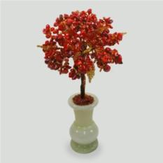 Дерево здоровья из красного коралла в вазочке из оникса