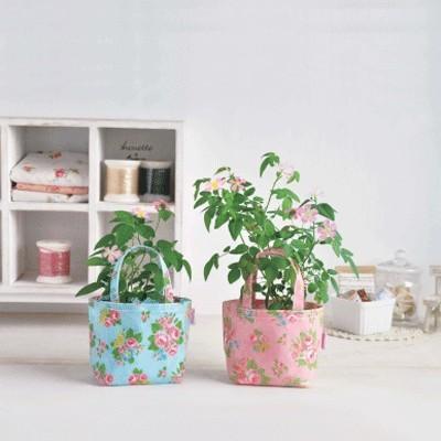 Набор для выращивания «Сумка с розой»