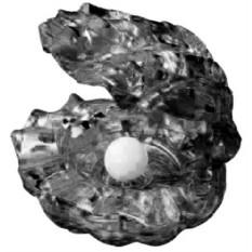 3D Головоломка Жемчужина черная