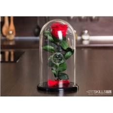 Роза в колбе «От практичного мужа»