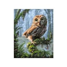 Картины по номерам «Совенок в сказочном лесу» Фила Джэгера