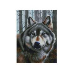 Алмазная вышивка «Волк»