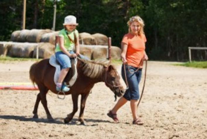 Подарочный сертификат Катание на лошадях всей семьей