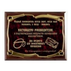 Плакетка наградная Кнут и пряник-2